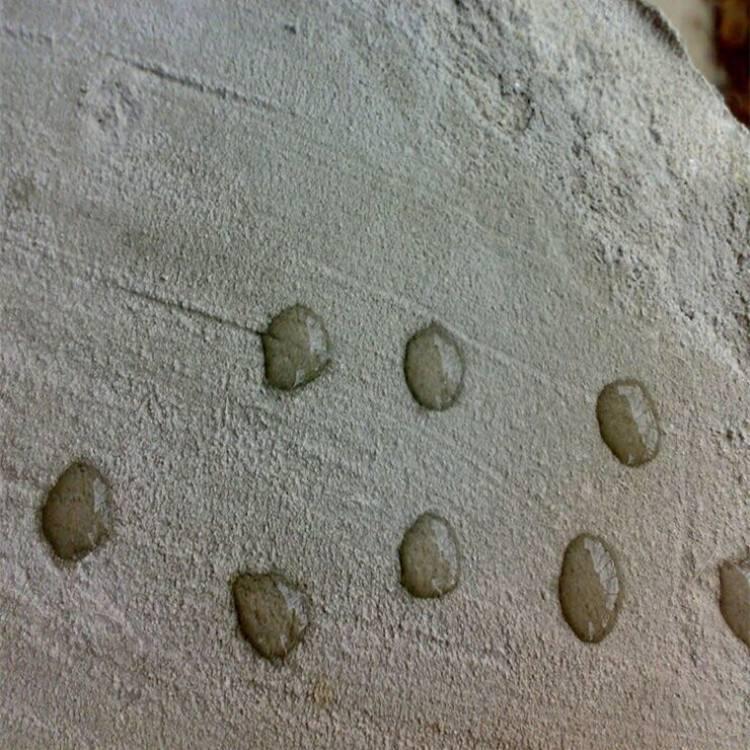 聚合物水泥砂浆是什么