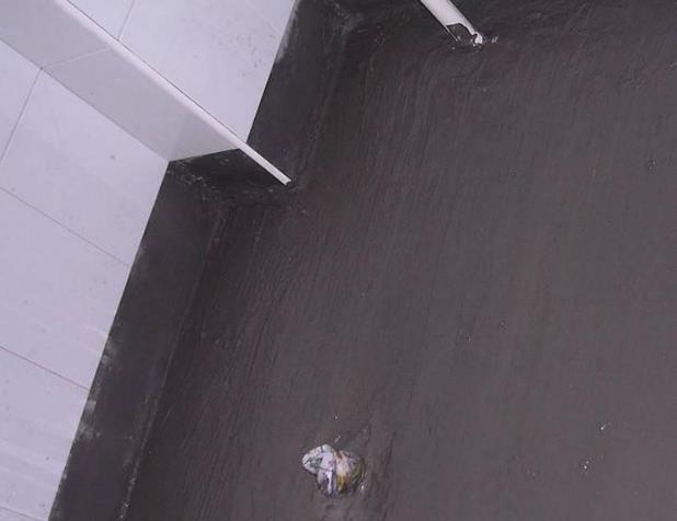 混凝土界面剂的施工工艺